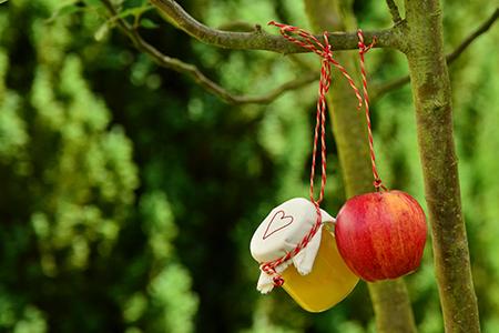 Trasformazione di frutta Blogzine Cidac groscidac.eu/blog